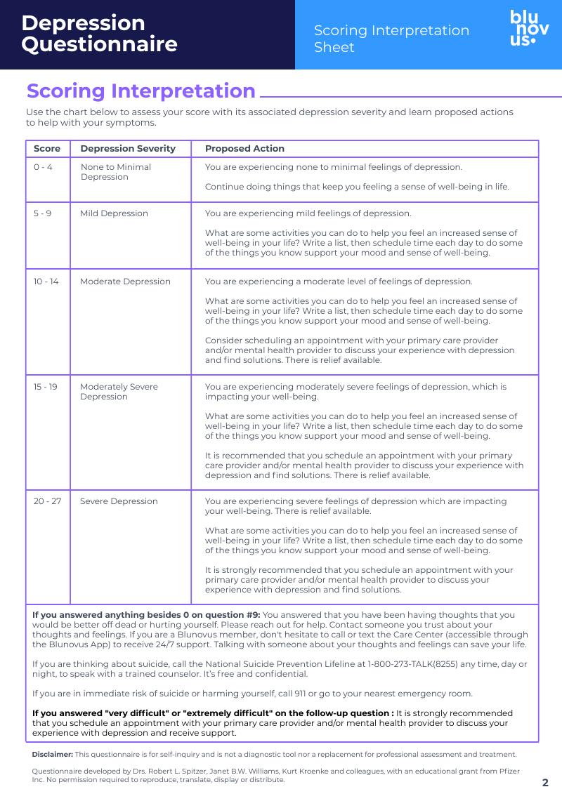 Depression Questionnaire Pg2